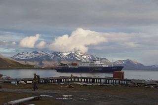495 Plancius bij Grytviken