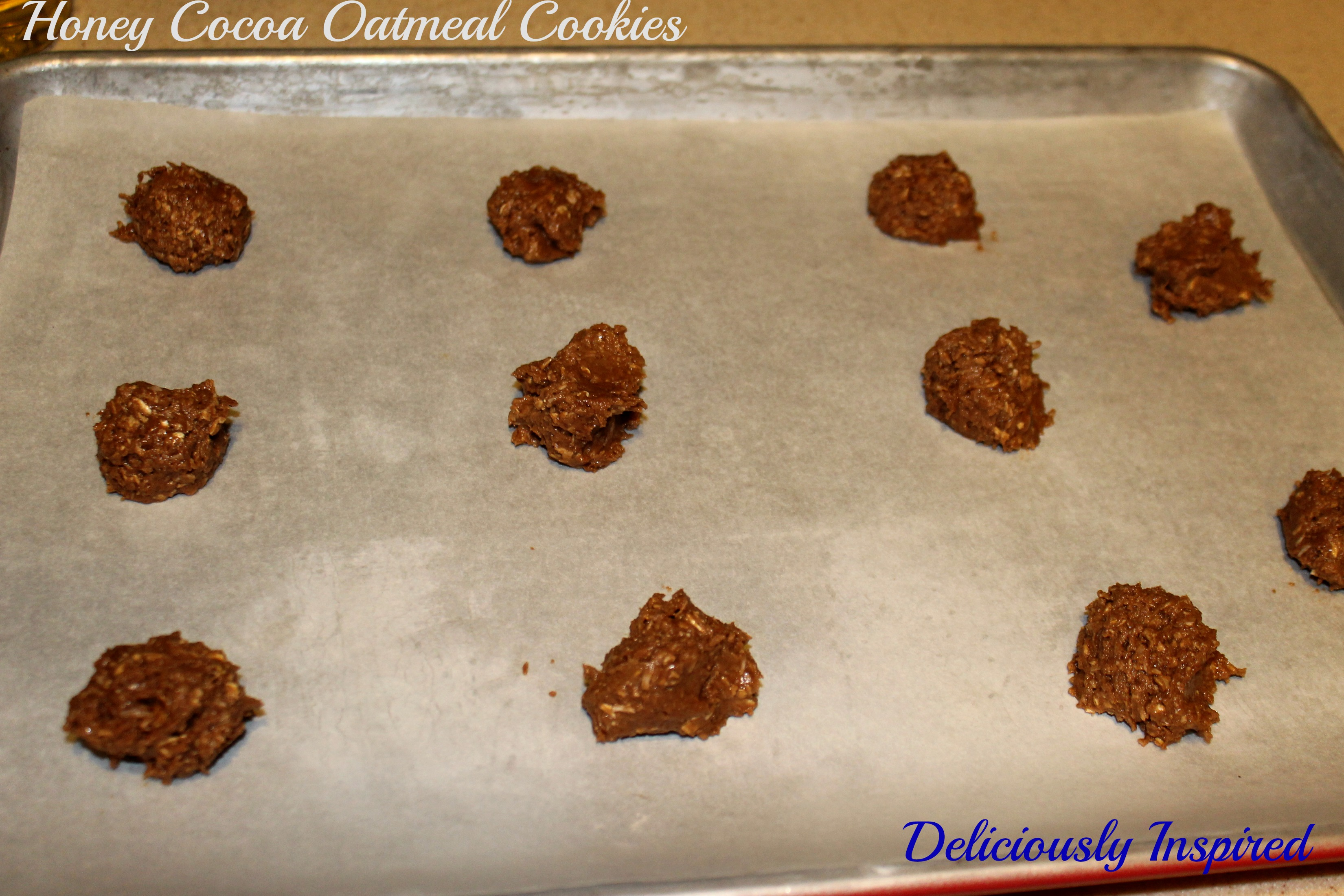 Honey Cocoa Oatmeal Cookies - ready to bake
