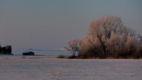 winter columbus snow tree wisconsin sunrise unitedstates hoarfrost scenic ©jrj