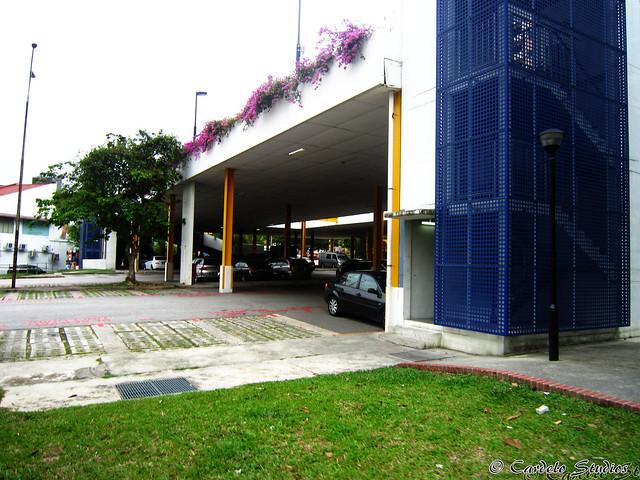 Holland Avenue 04