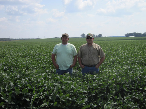 William and Thomas Anderson in their current soybean field.