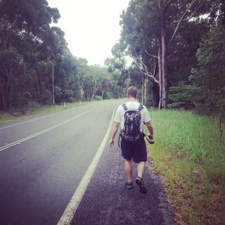 Camino training