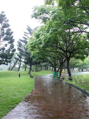 大溪埔頂公園_006.jpg