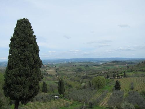 tuscany farm 018