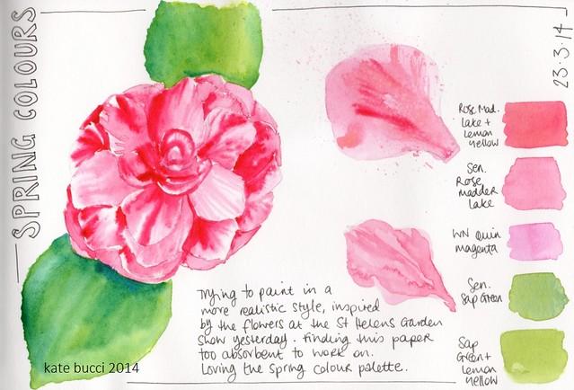 0314 026 Camellia web