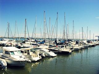 Puerto Vilarreal de San Antonio, Portural