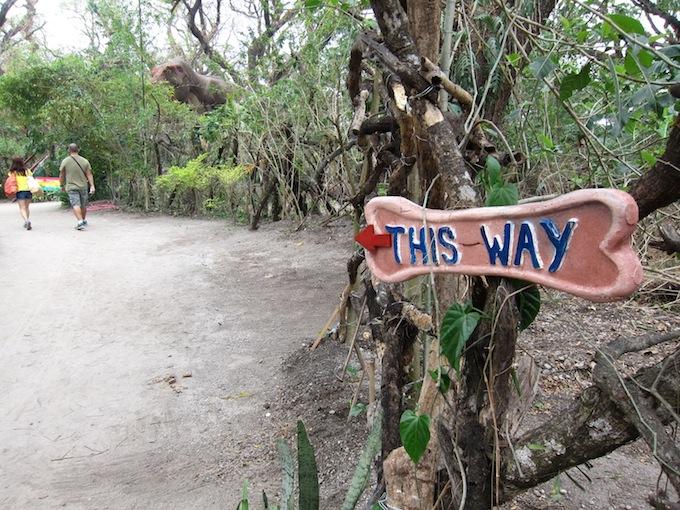 Dinosaurs Island - Clark - Jungle Safari