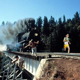 david vs. train. (1)
