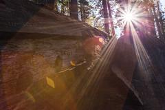 Kings Canyon & Sequoia - 71
