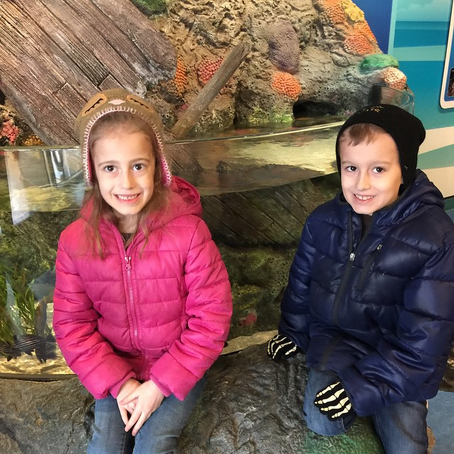 Spent the morning at Sea Life, the Kansas City aquarium. Kids really enjoyed it!! Now we are waiting for Brian to wake up from his nap 😂 so we can hit the pool!! Also, the forecast changed overnight... They are now calling for a BLIZZARD in St. Louis