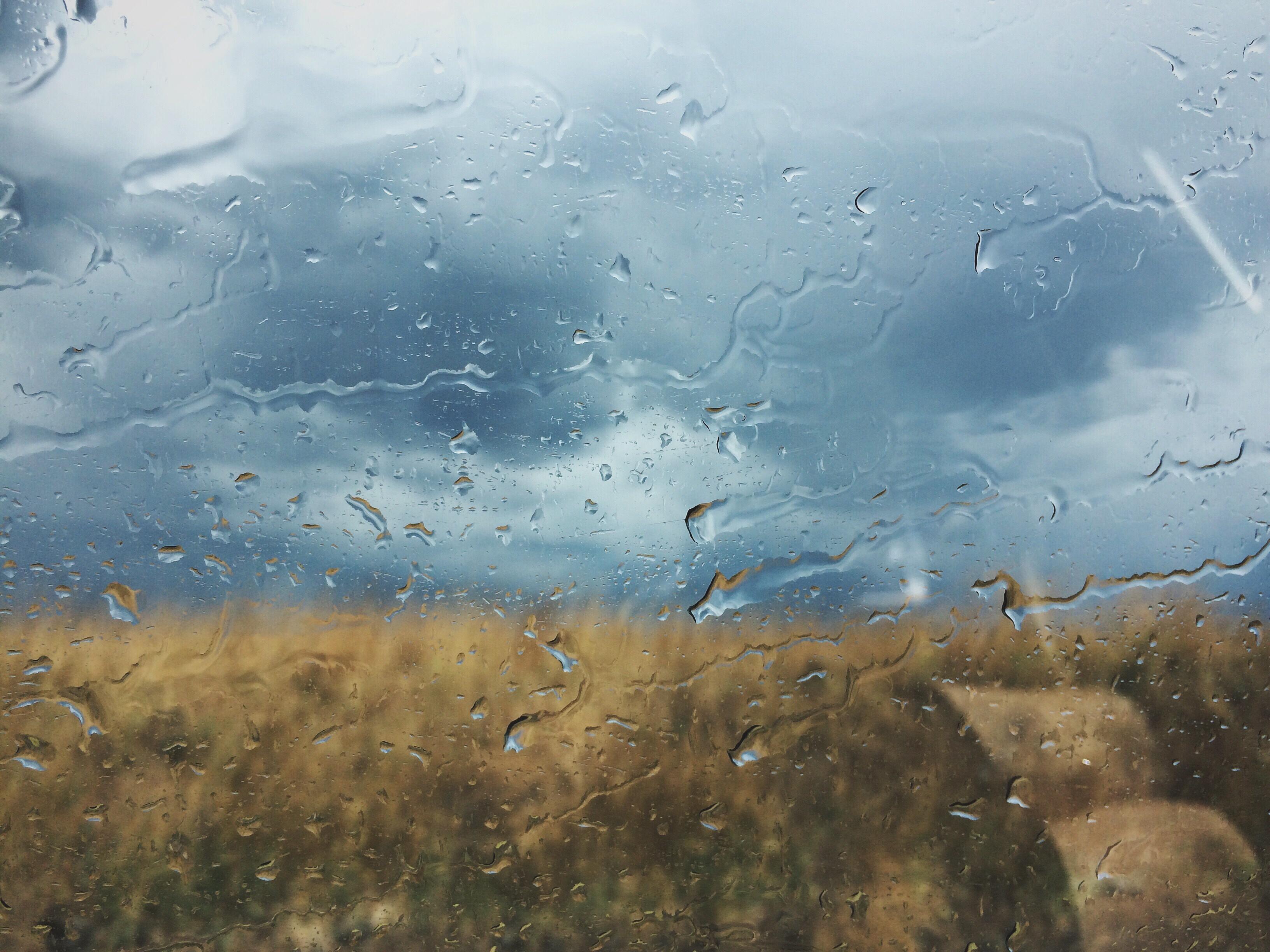 7 Things, Bramble & Thorn, Rain, Storm, Moody,
