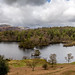 Tarn Hows - The Lakes