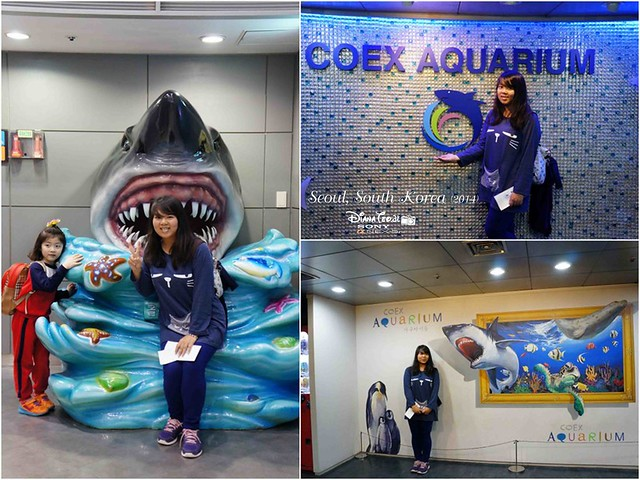 South Korea 2014 - Seoul Coex Aquarium 01-1