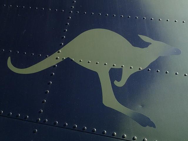 Kangaroo plane insignia - Wings Over Illawarra airshow
