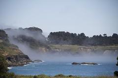 Mendocino fog