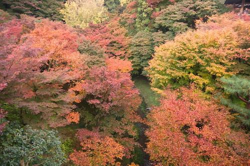 【写真】2012 紅葉 : 東福寺(2)/2017-11-27/IMGP7160