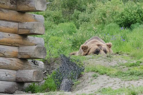 Alaska & Seattle Vacation - 2013-06-28 - Day 1
