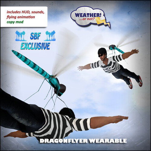 Dragonflyer Wearable box SBF