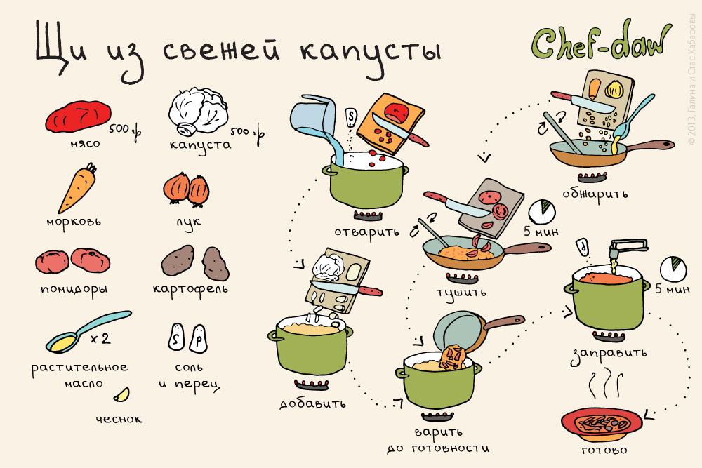 chef_daw_shi_iz_svezhey_kapusti
