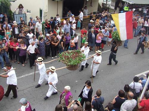 Madeira - Jardim da Serra - Festa Da Cereja