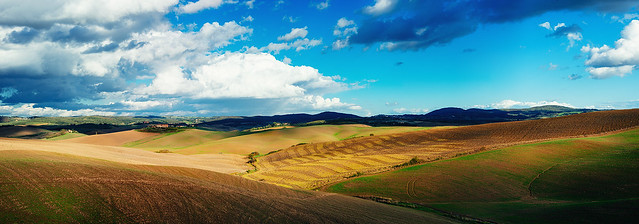 Another Tuscan Landscape