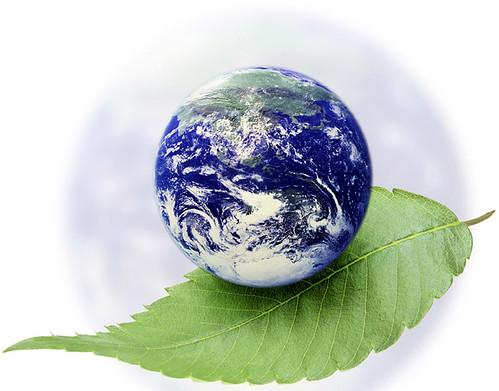 संकट में धरती