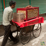 Puri Vendor on the Streets of Sringar, Kashmir, India