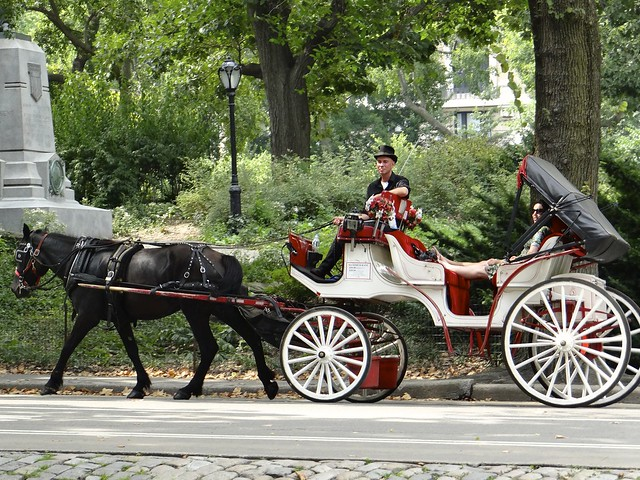 central park horse carriage flickr photo sharing. Black Bedroom Furniture Sets. Home Design Ideas