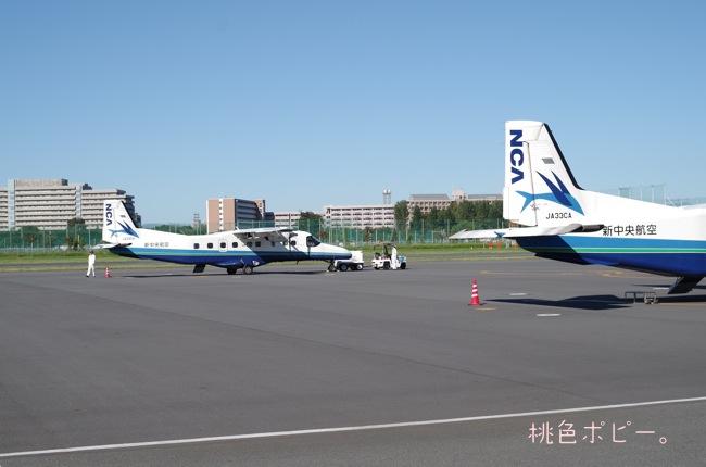 新中央航空IMGP9277