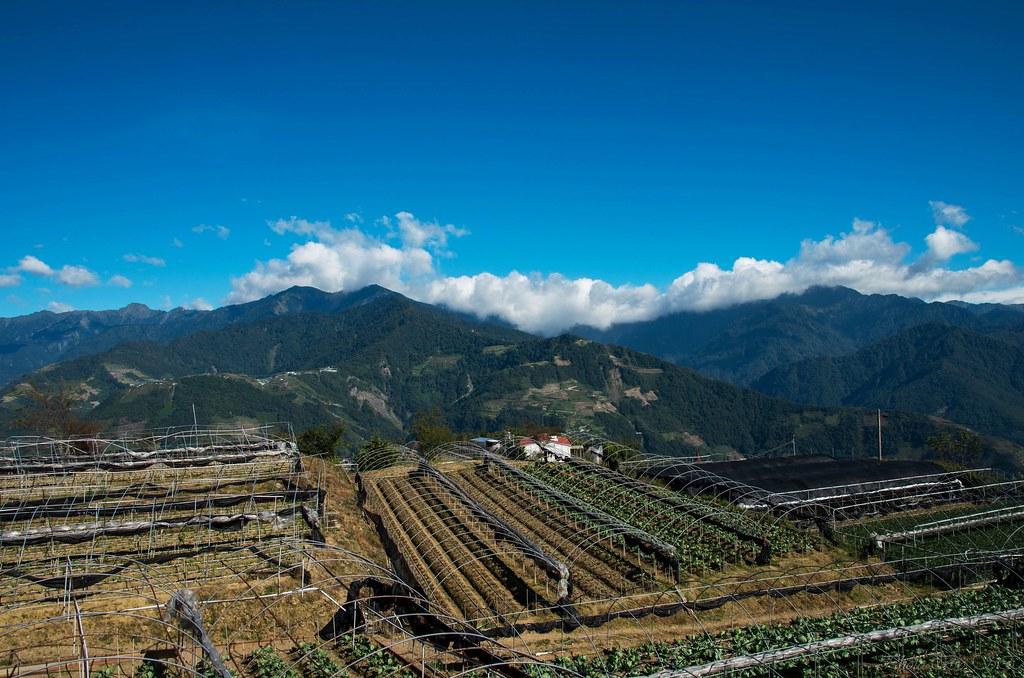 福壽山農場二天一夜遊