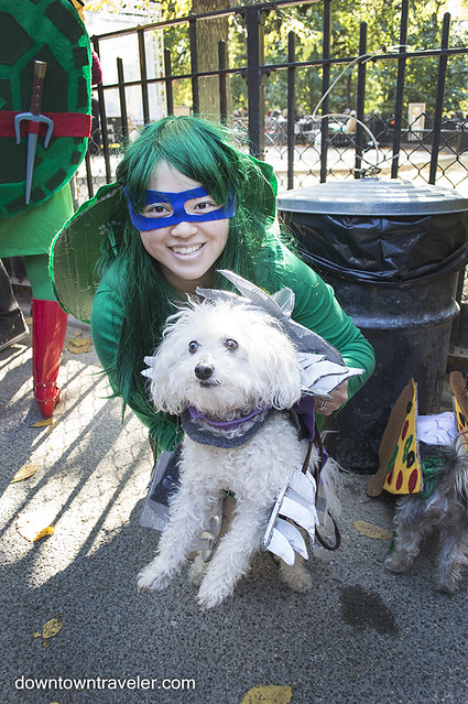 Halloween Dog Costume_Teenage Mutant Ninja Turtles_Shredder_Mango Bichon Frise