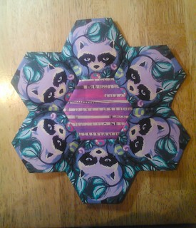 Tula Pink Acacia Raccoons and Collage by Carrie Bloomston--Hexies!