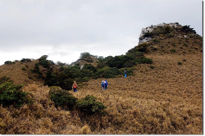 盆駒南峰(From 馬博)
