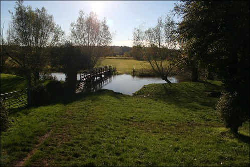 The River Evenlode near Stonesfield