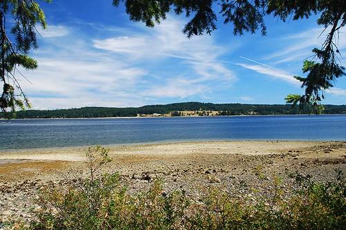 Coast between Union Bay and Buckley Bay, Vancouver Island, British Columbia