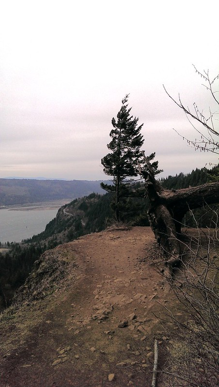 Pioneer Point, Cape Horn