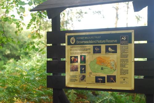 Dorset Wildlife Trust設立的保護區