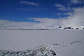 705 Weddell Sea