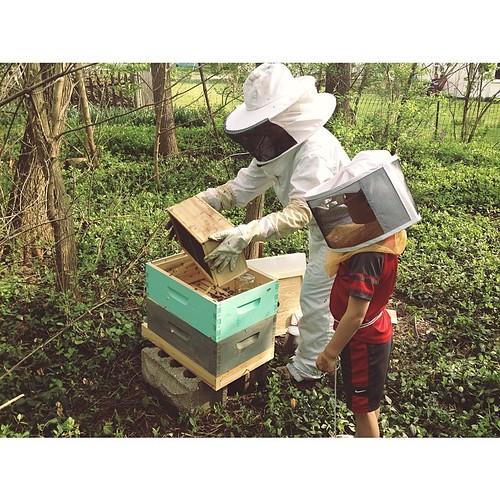 Shake it like a Polaroid picture. #bees #urbanfarming #honey