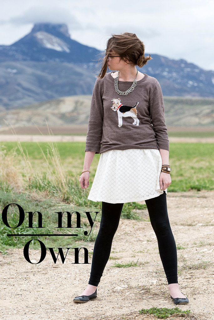 wyoming, never fully dressed, withoutastyle, joules, fox terrier, sweater, white dress,