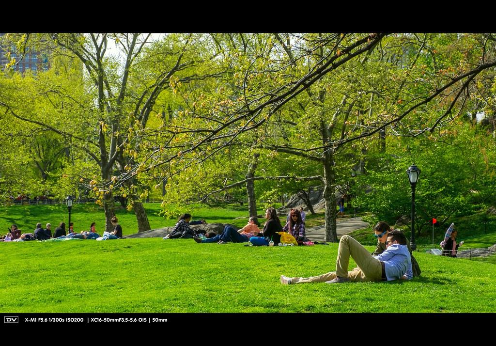 ►►► Central Park Spring 2014 紐約中央公園:春天 ● DV ◄◄◄ ..
