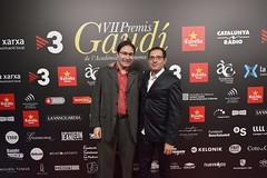 Catifa vermella VII Premis Gaudí (19)
