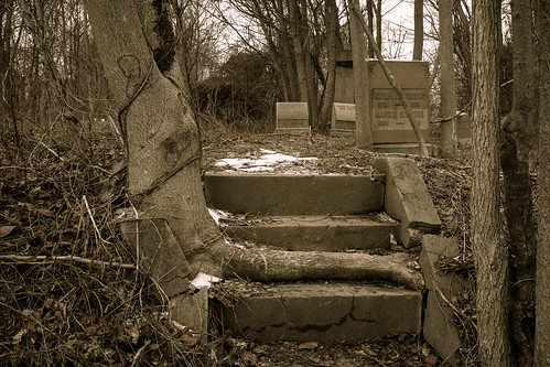 winter blackandwhite bw snow tree abandoned philadelphia water overgrown monochrome cemetery graveyard stairs vintage pennsylvania headstone tombstone steps gravestone burialground mountmoriahcemetery canoneos7d