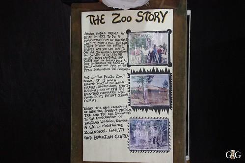 Zoo Karibikinsel Belize 19.11.2014 12