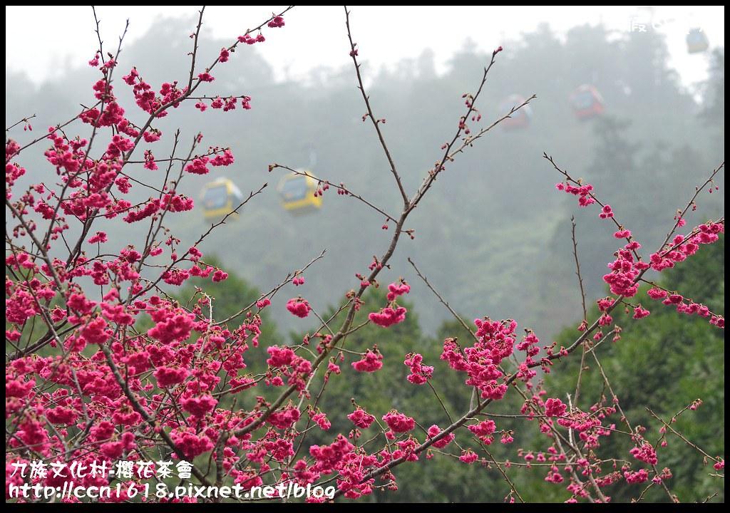 九族文化村-櫻花茶會DSC_4511