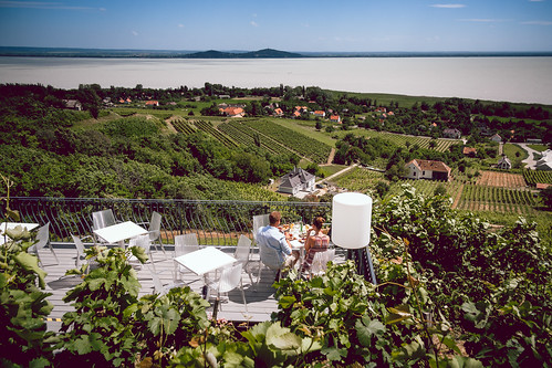 summer june canon wine 1785 balaton vino wein vinery 2016 nyár efs1785isusm badacsony június efs1785 1000d canoneos1000d