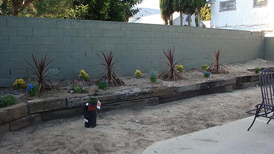 San Gabriel_begin planting