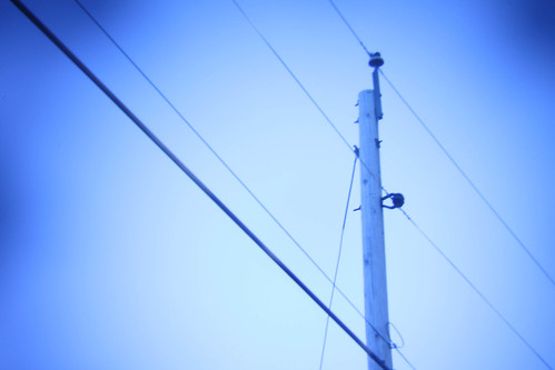 Powerlines 2