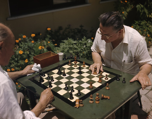 Men playing chess in St. Petersburg, Florida