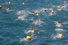 individual sports, open water swimming, swimming, sports, recreation, outdoor recreation, water sport,